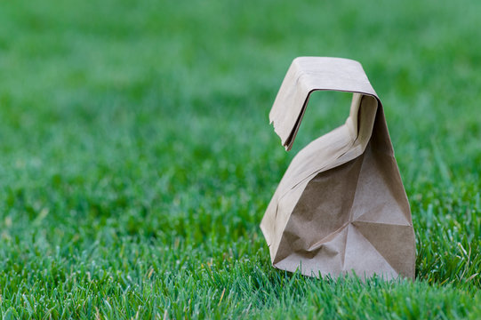 Brown paper bag isolated on green grass with a shallow depth of field and copy space