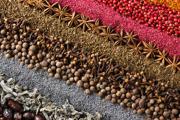 Fototapete - Spices and herbs background. Different seasonings are scattered in stripes color.