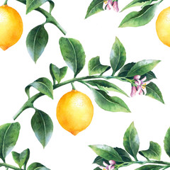 Lemon on a branch seamless background. Watercolor pattern of citrus leaves, fruit and blossoms.