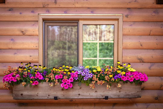 close up of window with window box full of flowers