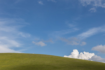 A green hill top under a deep blue sky, with a white and fluffly cloud