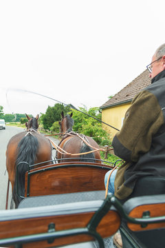 Two horses (Saxon Thuringian heavy warm blood) pull a carriage. The coachman can be seen from the side. They drive on asphalt in a small village.