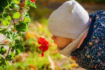 little girl smelling red flowers