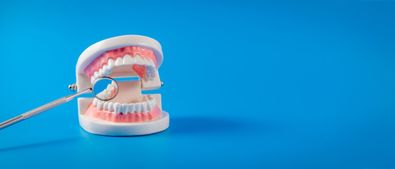 tooth model and dental mirror on blue background with copy space