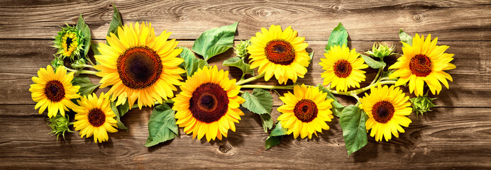 Photo sur Plexiglas Tournesol Sunflowers on wooden board