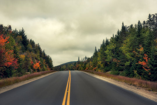 The road running among the mountains overgrown with autumnal bright forest and dramatic sky.White Mountain National Park. USA. New Hamshire.