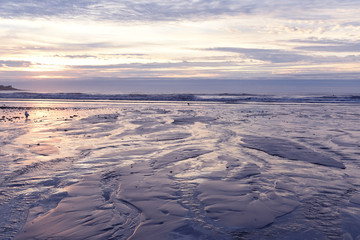 Fotobehang - Early  morning on the Atlantic coast. Reflection of the dawn sky in the water on the sand. USA. Maine.