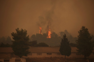 Flames rise behind a farm as a wildfire burns near the village of Psachna, on the island of Evia