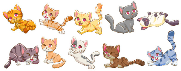 cat vector set graphic clipart design