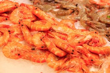 Fresh red prawns on top of ice at La Boqueria market