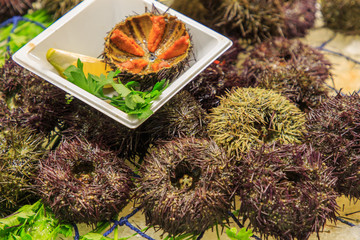 Sea urchins, exposed in plastic tray cut and whole in the Boqueria market