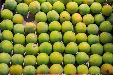 Green plums placed with a lot of order in cash at the Boqueria market
