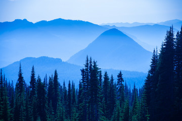 Wall Mural - Hazy scenic view of mountain ranges in Mt. Rainier National Park.