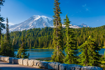 Wall Mural - Overlooking a lake and a forest of pine trees with Mt. Rainier looming in the distance at Mt. Rainier National Park.