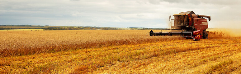 Photo sur Plexiglas Culture Panoramic view at combine harvester working on a wheat field. Harvesting the wheat. Agriculture. Panoramic banner.