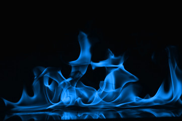 Canvas Prints Fire / Flame Beautiful fire blue flames on a black background.