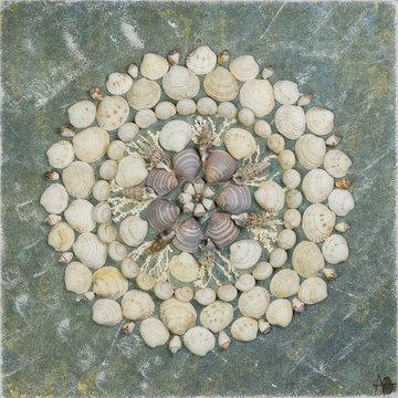 Seashells ART Mandala - Water crystal
