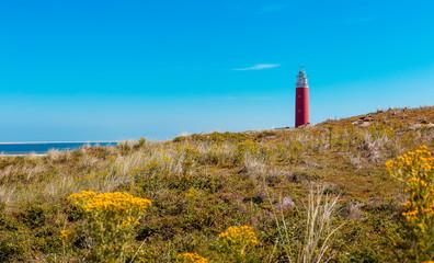 Lighthouse Eierland on the dutch island Texel