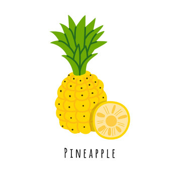 Pineapple fruit flat vector illustration