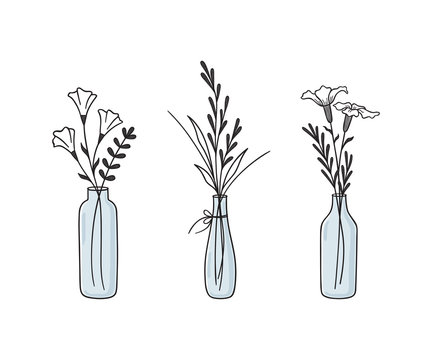 Hand drawn floral compositions in vases and bottles. Abstract wildflowers, grasses and twigs