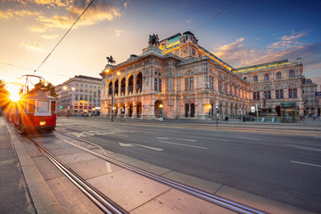 Garden Poster Vienna Vienna, Austria. Cityscape image of Vienna with the Vienna State Opera during sunset.