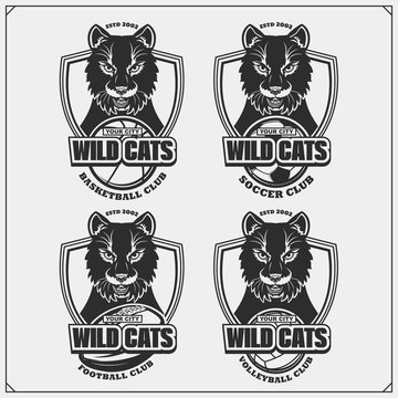 Volleyball, baseball, soccer and football logos and labels. Sport club emblems with wild cat. Print design for t-shirt.