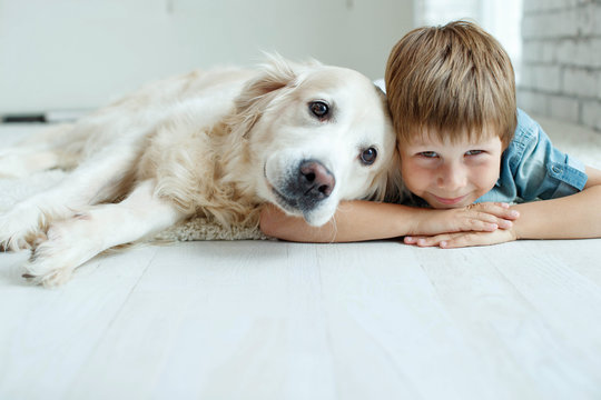 A child with a dog. Little boy with a dog at home.