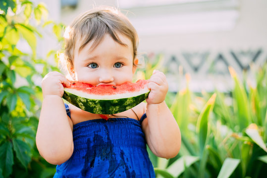 Charming little girl eating watermelon in the yard on the background of plants