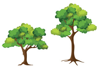 Wall Murals Kids Collection of trees on white background. Cartoon of trees.