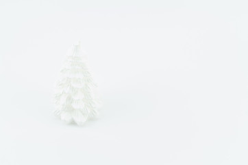 white wax fir on a white background