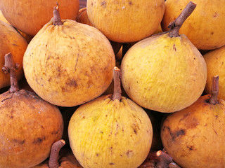 Organic fresh fruit Santol sold in Thailand's local market.