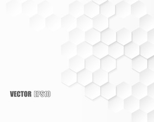 Abstract. Embossed Hexagon , honeycomb white background. light and shadow. Vector.