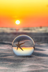 Photo sur Aluminium Taupe Beautiful sunset on the beach in Slowinski National Park near Leba, Poland. View of a starfish through a glass, crystal ball (lensball) for refraction photography. Wild, untouched nature.