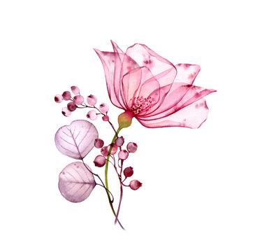 Transparent floral set isolated arrangement of big pink rose flower, berries, leaves, branches in pastel grey, violet, purple, vintage ornament, wedding design, stationery card print