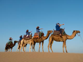 Wall Murals Algeria Morocco, Essaouira beach camel trek