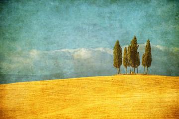 Vintage image of typical Tuscany landscape, Italy
