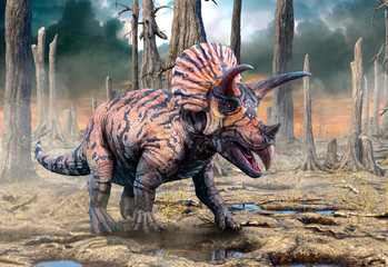 Wall Mural - Triceratops from the Cretaceous era scene 3D illustration