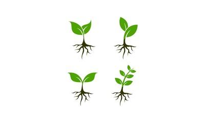 Plant set template vector