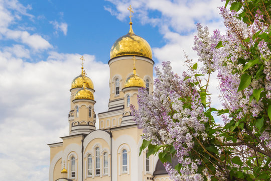 Golden domes of the church and bush of lilac