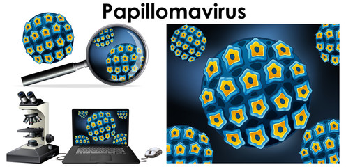 Papillomavirus virus on computer screen and magnifying glass
