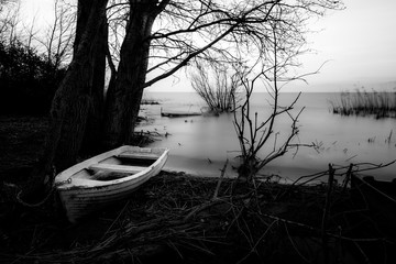A white, small fishing boat near trees on a lake shore
