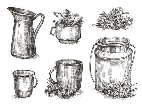 Crockery and wildflowers. Set of sketch images. Vintage illustrations.