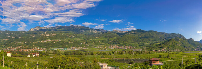 landscape at Volano with view to the valley with vineyards and apple plantations in Italy, Tyrol