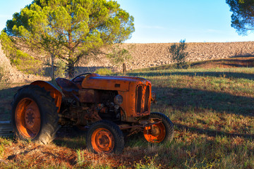 Old orange rusty tractor in a field