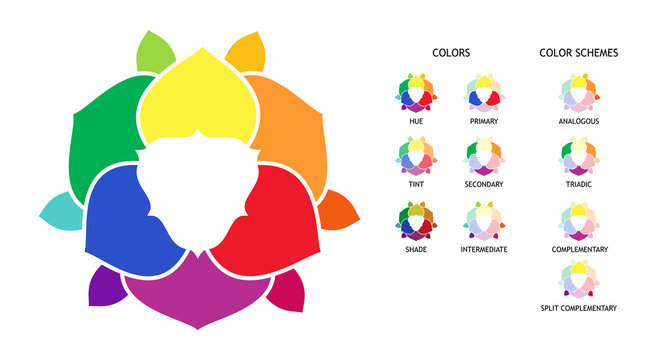 Color wheel with hue, tint, shades variations. Primary, secondary and supplementary color diagram. Color combinations schemes poster.