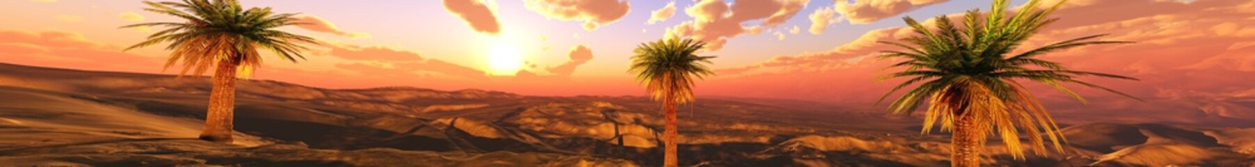 Poster Orange eclat Panorama of a desert landscape at sunset. Sand desert with palm trees under the sky with clouds. Banner. , 3d rendering