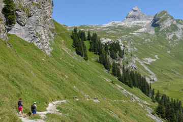 Mountain path at Engstlenalp over Engelberg on Switzerland