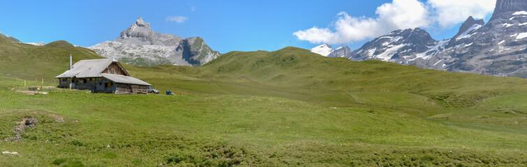 Tannen over Engelberg on the Swiss alps