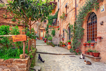 Fototapete - Beautiful alley in Tuscany, Old town, Italy
