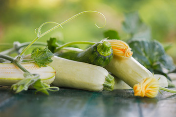 Fresh zucchini, green vegetables from local farm. Pile of Freshly harvested courgette with leaves and flowers.